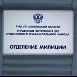 Отделения полиции Ногинска